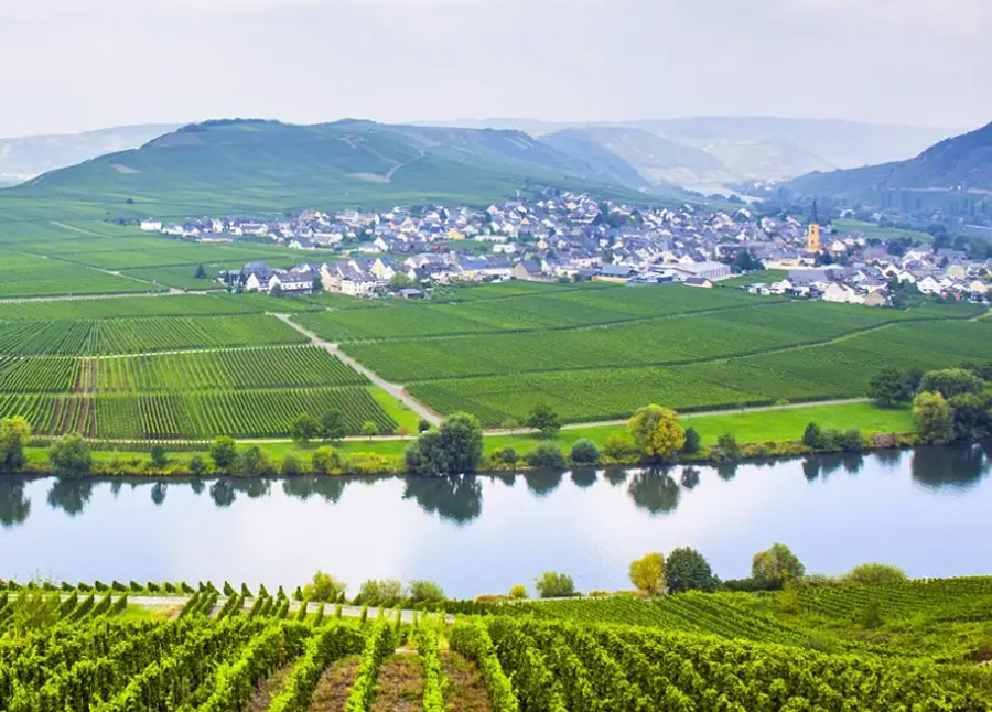 The Valley Of The Romantic Rhine, The Moselle And The Main